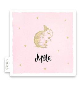 Familycards Klein Geluk Geboortekaartje - Konijntje in goud met stippen op roze