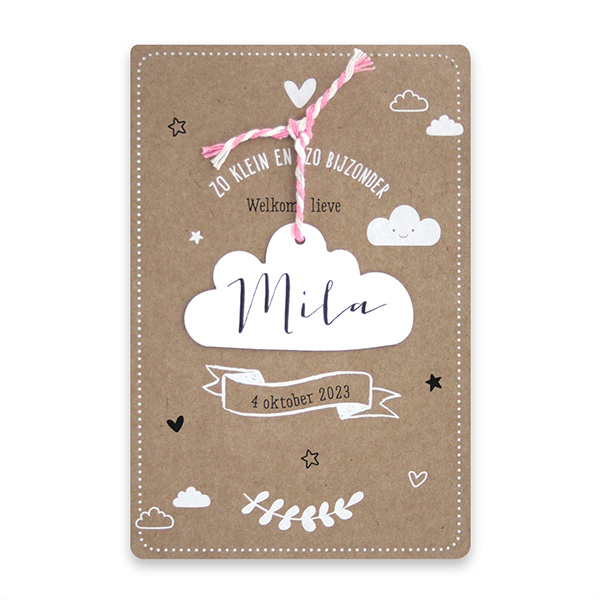 Familycards Klein Geluk Geboortekaartje  in kraftpapier met wolkje-roze koordje (66441R)