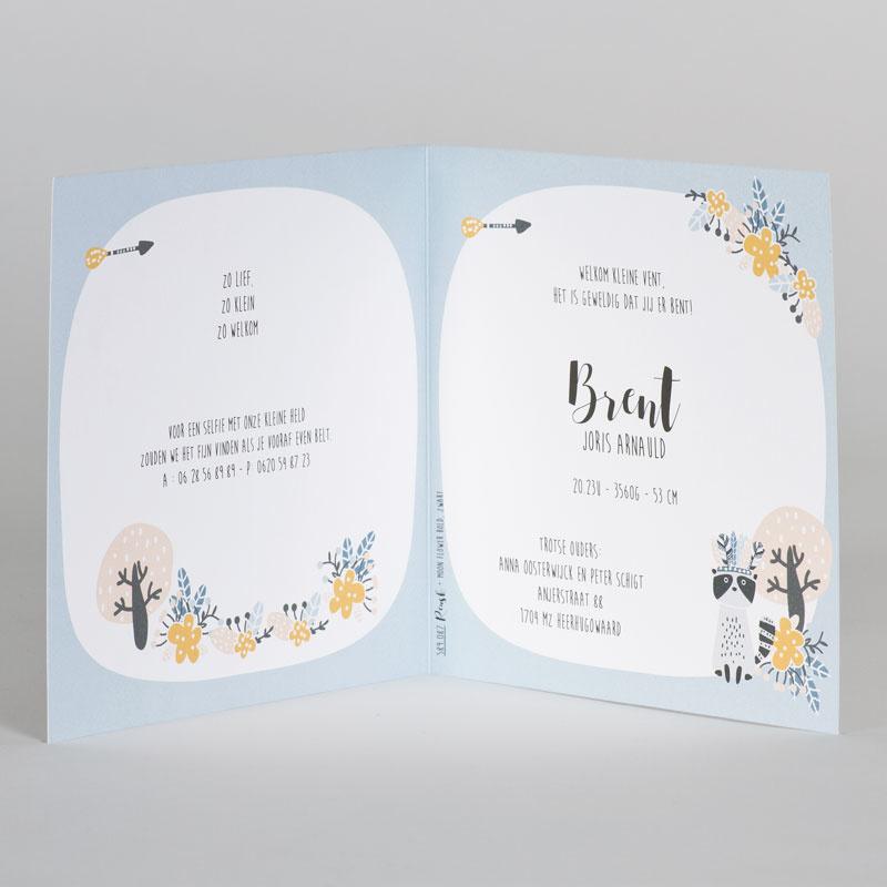Buromac Baby Folly 2019 Geboortekaart in lichtblauw met wasbeertjes (589087)