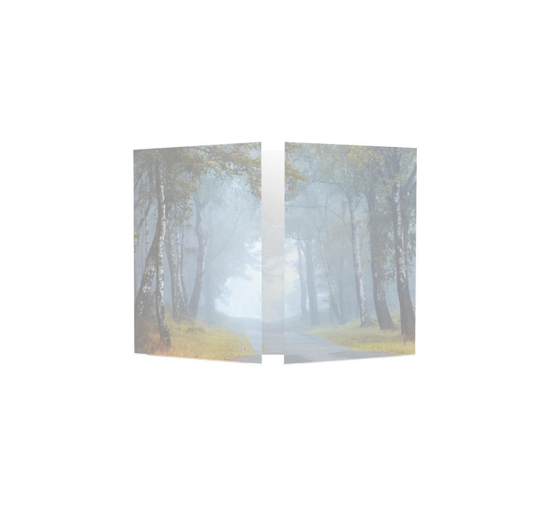 Familycards - Nova Memoria Rouwkaart - Bospad - drieluik  (893183)