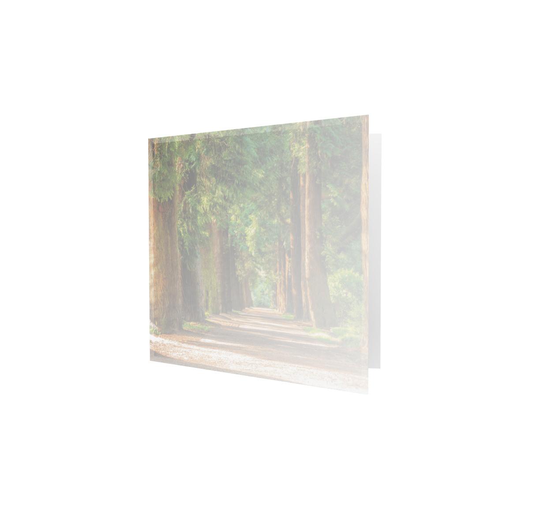 Familycards - Nova Memoria Rouwkaart -  naaldbomen - vierkant  (893205)