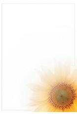 Familycards - Nova Memoria Rouwkaart - Zonnebloem en grijze rand (891292B)