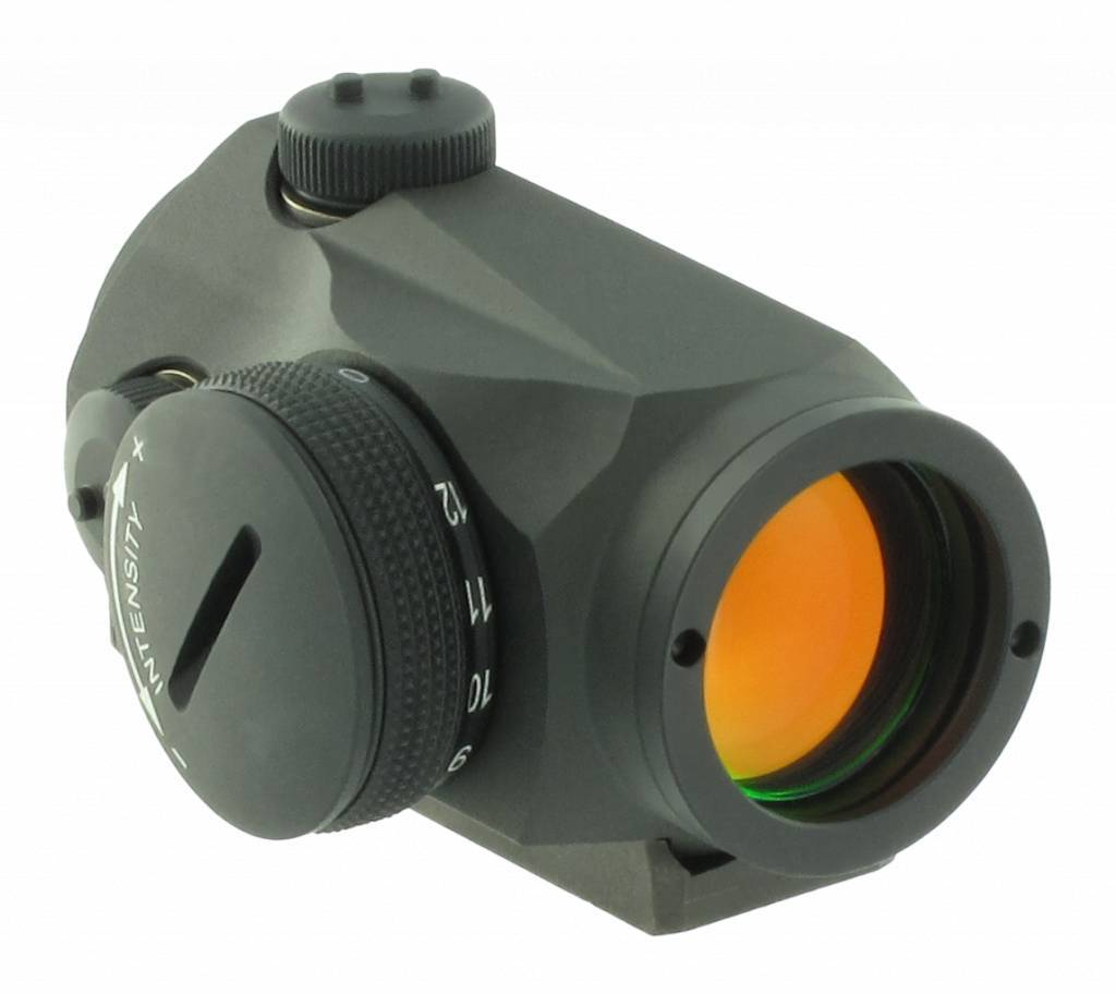 Aimpoint Micro T-1 (Sight only)