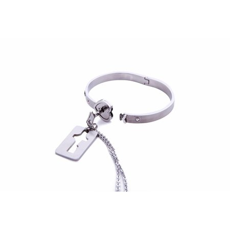 Stainless steel armband en ketting