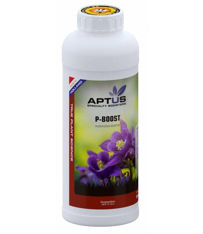 Aptus P Boost