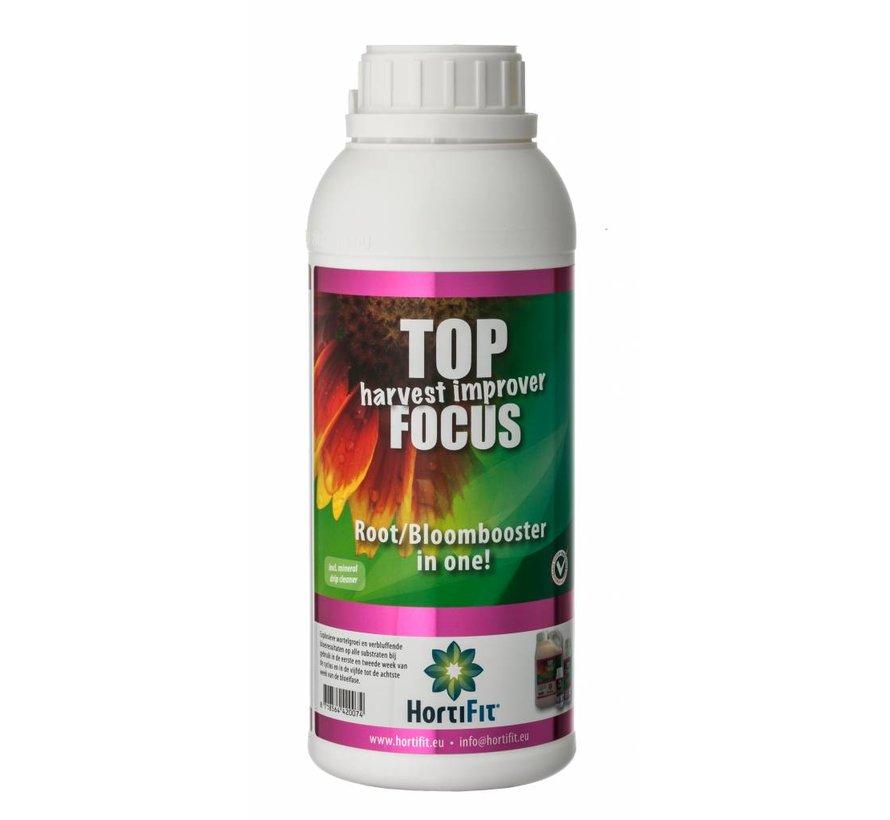 Top Focus