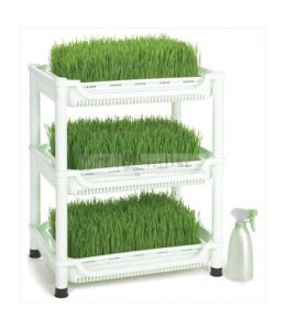 Sproutmanu0027s Wheatgrass Grower
