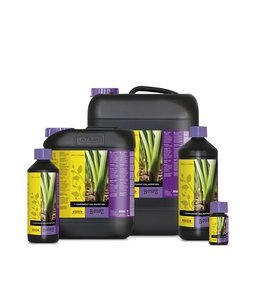 Atami B'cuzz 1 Component Nutrition