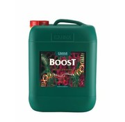 Canna Cannaboost Accelerator 10 Liter