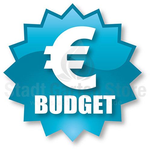Budget Sets