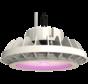 HPLED 200 Watt Grow Lamp