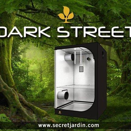 Secret Jardin Dark Street