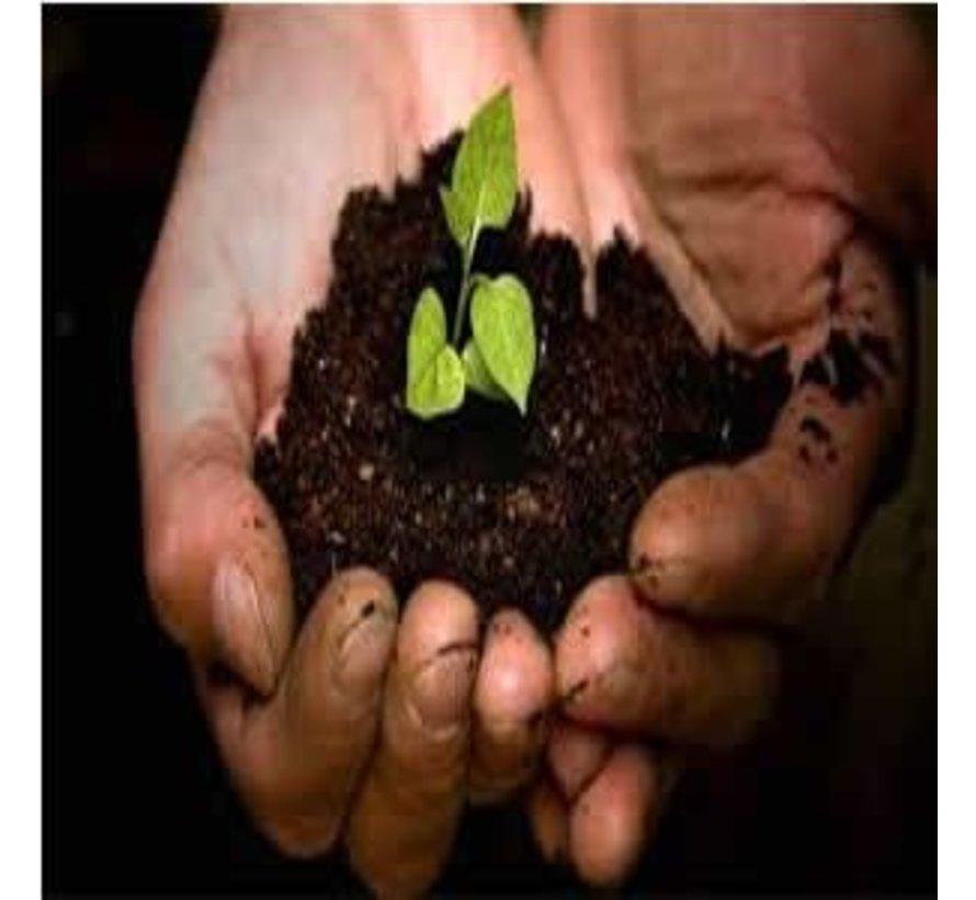 Bio Growmix Erde 50 liter ohne Perlite