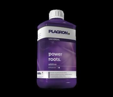Plagron Power Roots 1 Liter Wurzelwachstum Zusatzstoffe