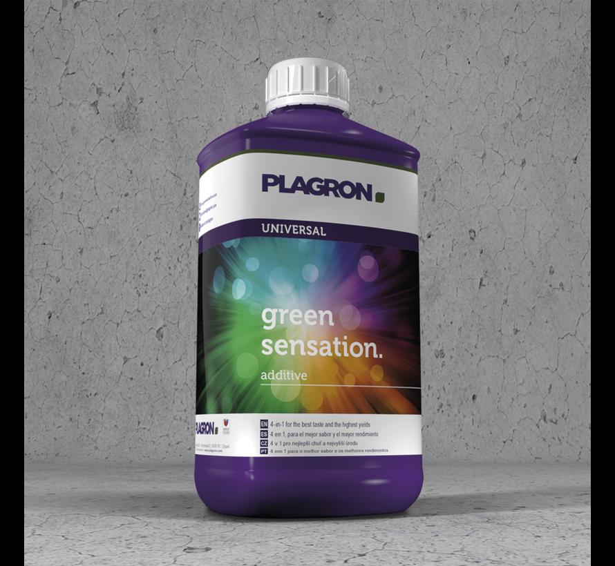 Plagron Green Sensation 250 ml Zusatzstoffe