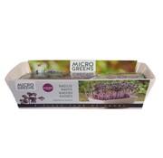 Buzzy Grow Gifts Buzzy Microgreens Tisch Rettich