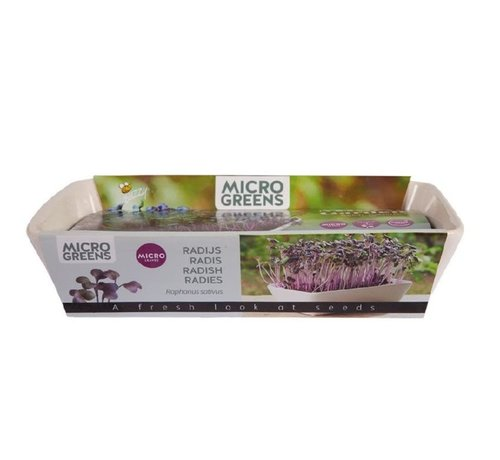 Buzzy Grow Gifts Microgreens Tisch Rettich