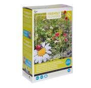 Buzzy Grow Gifts Friendly Flowers XL Marienkäfer Blumenmischung  50m²