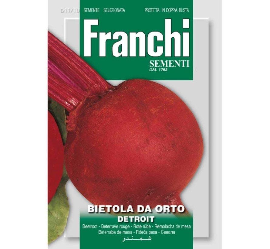Franchi Rübe Bietola Da orto Detroit