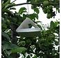 Pheromonfalle gegen Apfelwickler inkl. 1 Kapsel