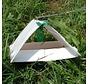 Deltaval Pflaumenmotte inkl. 2 Pheromonkapseln