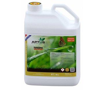 Aptus Fungone Konzentrat 5 Liter