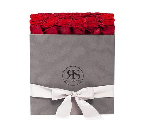 Rosuz Flowerbox Longlife Celine Rot