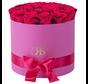 Flowerbox Longlife Ciara Rosa