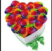 Rosuz Flowerbox Longlife Ella Regenbogen