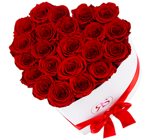 Rosuz Flowerbox Longlife Ella Rot