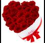 Flowerbox Longlife Ella Rot
