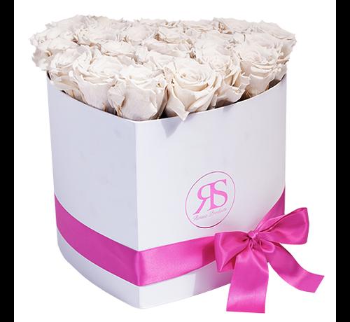 Rosuz Flowerbox Longlife Ella Weiß
