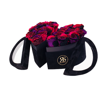 Rosuz Flowerbox Longlife Mary J Regenbogen