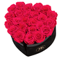 Flowerbox Longlife Mary J Rosa