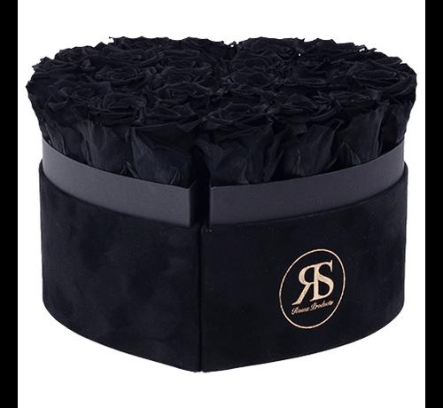 Rosuz Flowerbox Longlife Mary J Schwarz