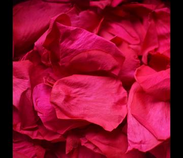 Rosuz Rosenblüten Longlife Rosa 25GR