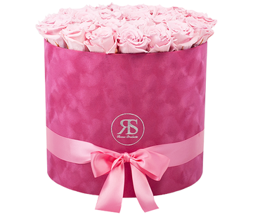 Rosuz Flowerbox Longlife Suzy Hellrosa