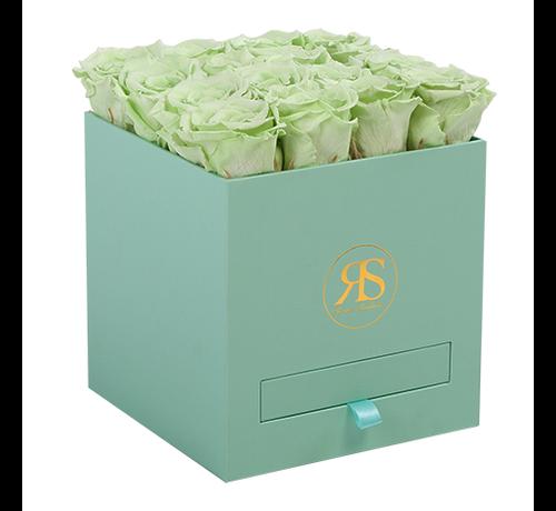 Rosuz Flowerbox Longlife Louise Hellgrün