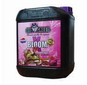 Bio Green Bio Green X Blüte 10 Liter