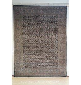Art. V - 583 -Indo-Bidjar