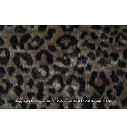 Leopard Nut 7025-11
