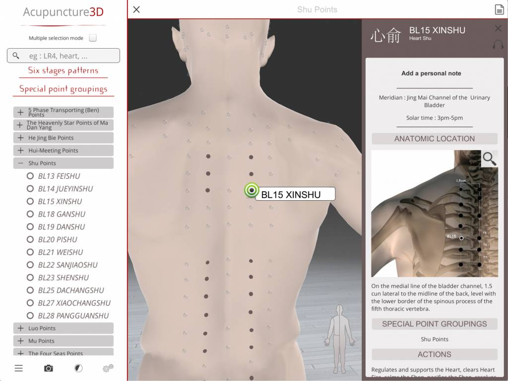 Chan Ly Software Acupuncture 3D - Software for Apprentices & Proffessionals