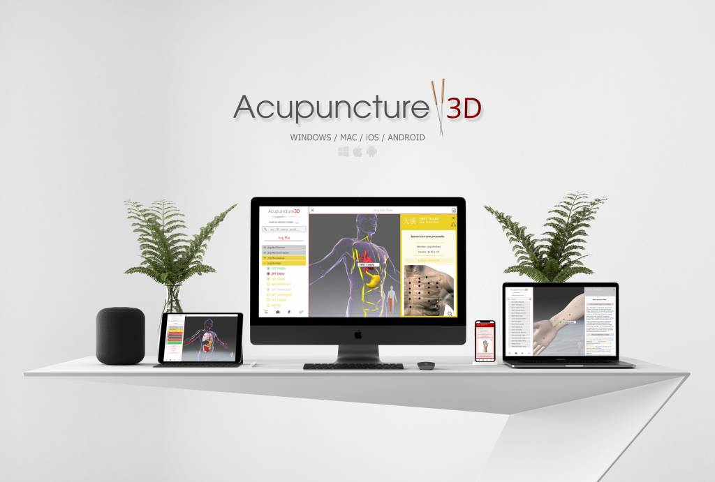 Chan Ly Software Acupuncture 3D - Lern- und Praxissoftware