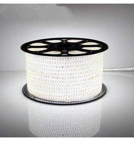 TIJDELIJKE ACTIE! LED lichtslang plat 50 meter 6000K koud wit licht incl. aansluitsnoer