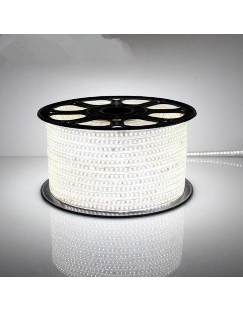 ACTIE! LED Lichtslang plat- 50 meter - 6000K daglicht wit - plug and play