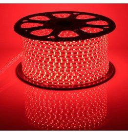 LED lichtslang plat 50 meter Rood licht incl. aansluitsnoer