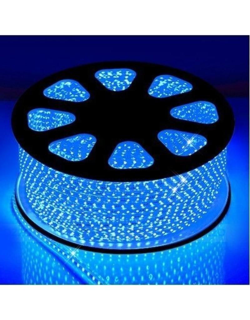 LED lichtslang plat 50 meter Blauw licht incl. aansluitsnoer