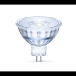 LED spot GU5.3 - MR16 LED - 3W vervangt 25W - 4000K helder wit licht - Glazen behuizing