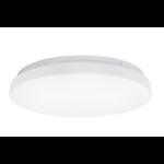LED Witte plafondlamp rond- 12W vervangt 60W - 4000k helder wit licht - 255x55mm
