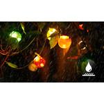 Lichtsnoer buiten IP44 - 8 meter 6W - incl. 10 LED lampen verschillende lichtkleuren